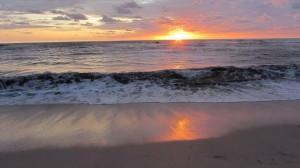 Sunset | Sasha Dae | @sashadae | nosarananda.com